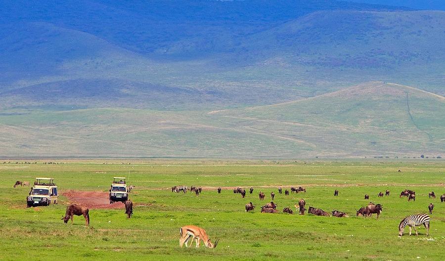 3 Days Ngorongoro Crater Safari Package